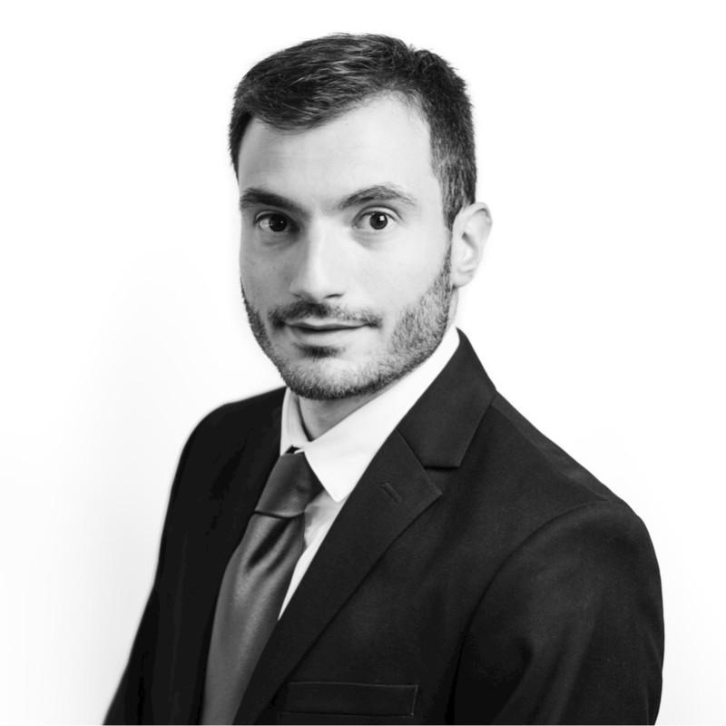 Arnaud Scalia, Consultant